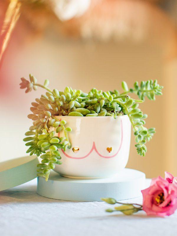 Boobie planter